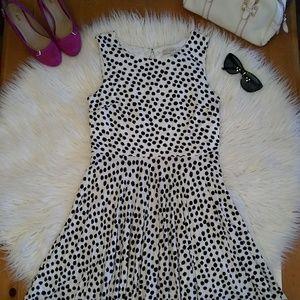 Ann Taylor LOFT black/white polka dot Flare dress